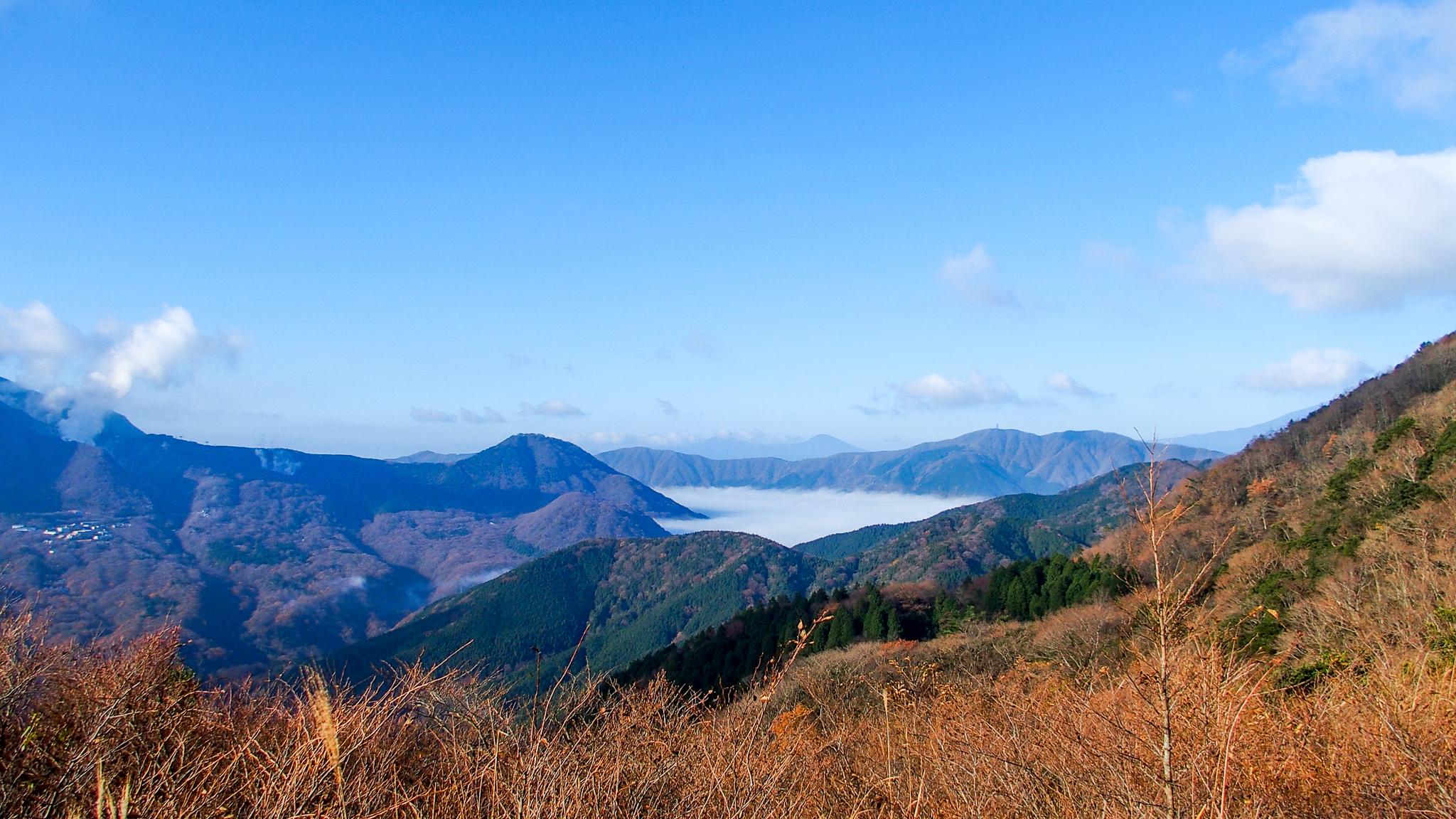 金時山・明神ヶ岳からの仙石原・雲ですっぽり覆われてます