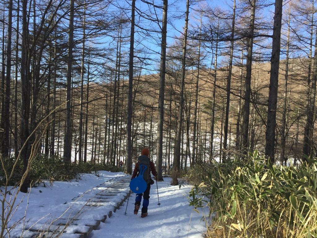 入笠山・入笠湿原に至る道