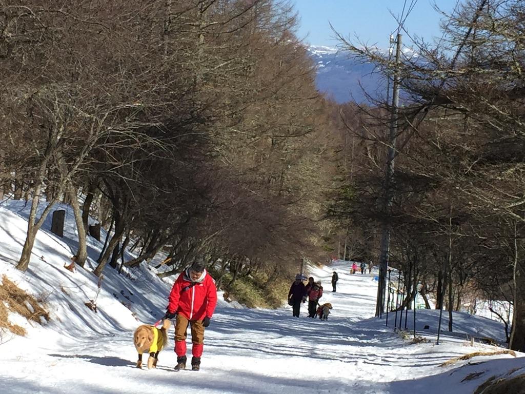 入笠山・入笠山と登山犬
