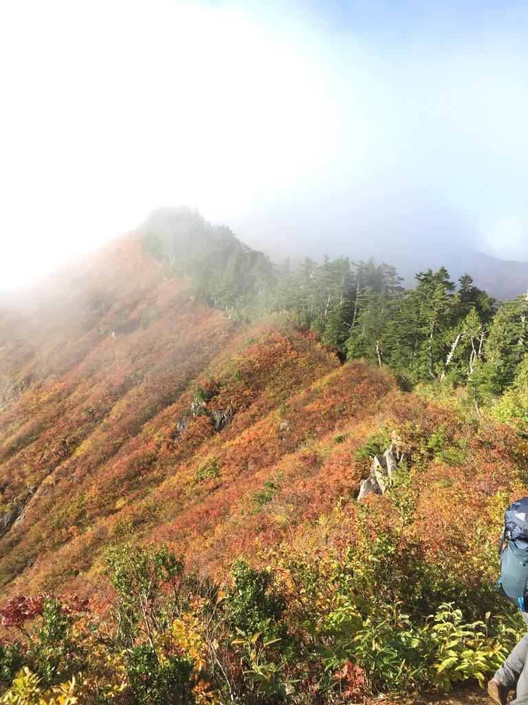 平ヶ岳・台倉山へ!