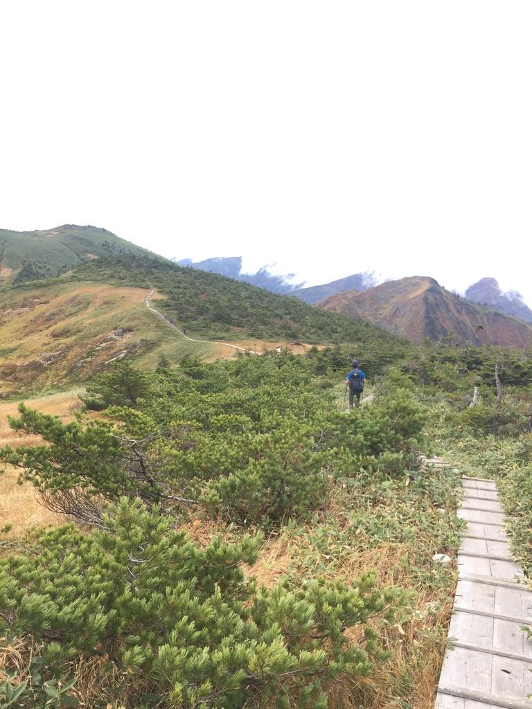 平ヶ岳・平ヶ岳の木道2