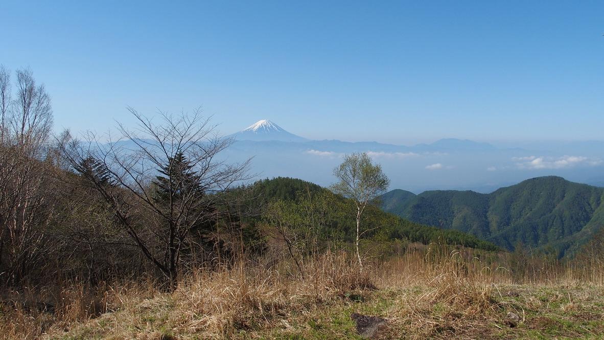 乾徳山・ススキと富士山