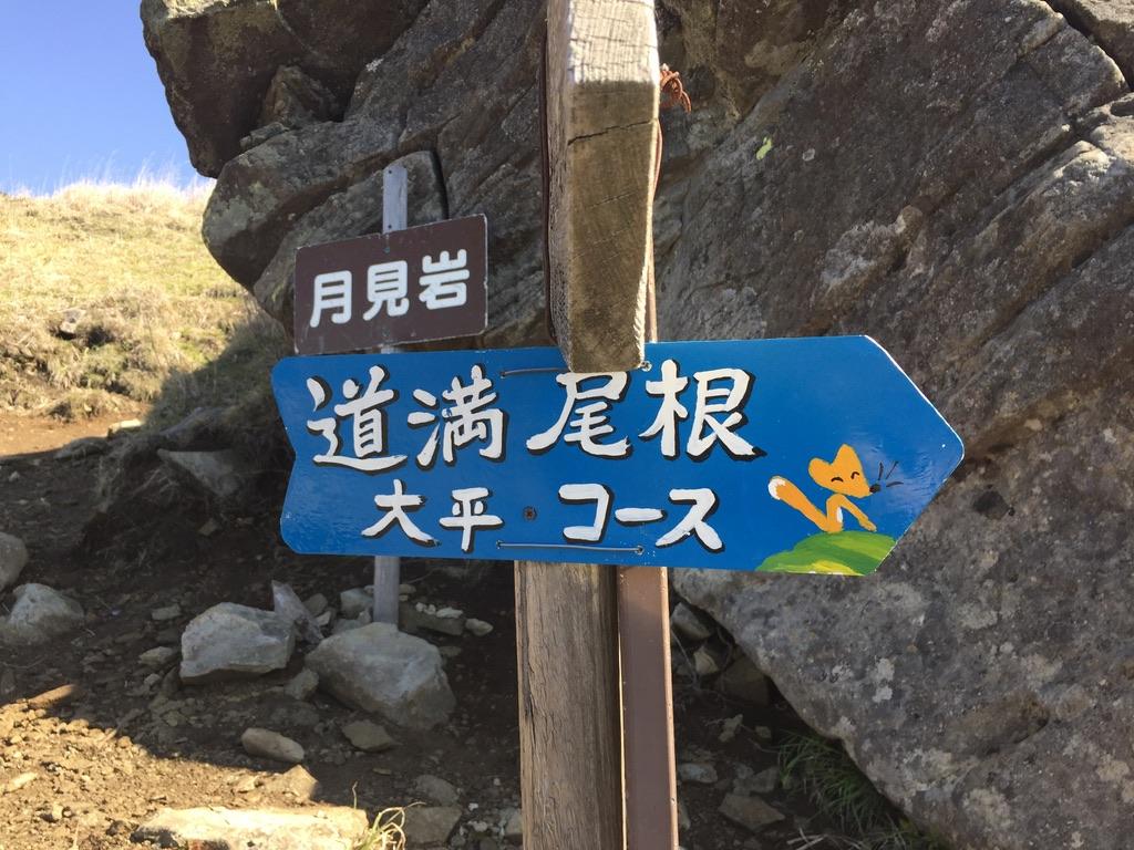 乾徳山・月見岩のキツネさん