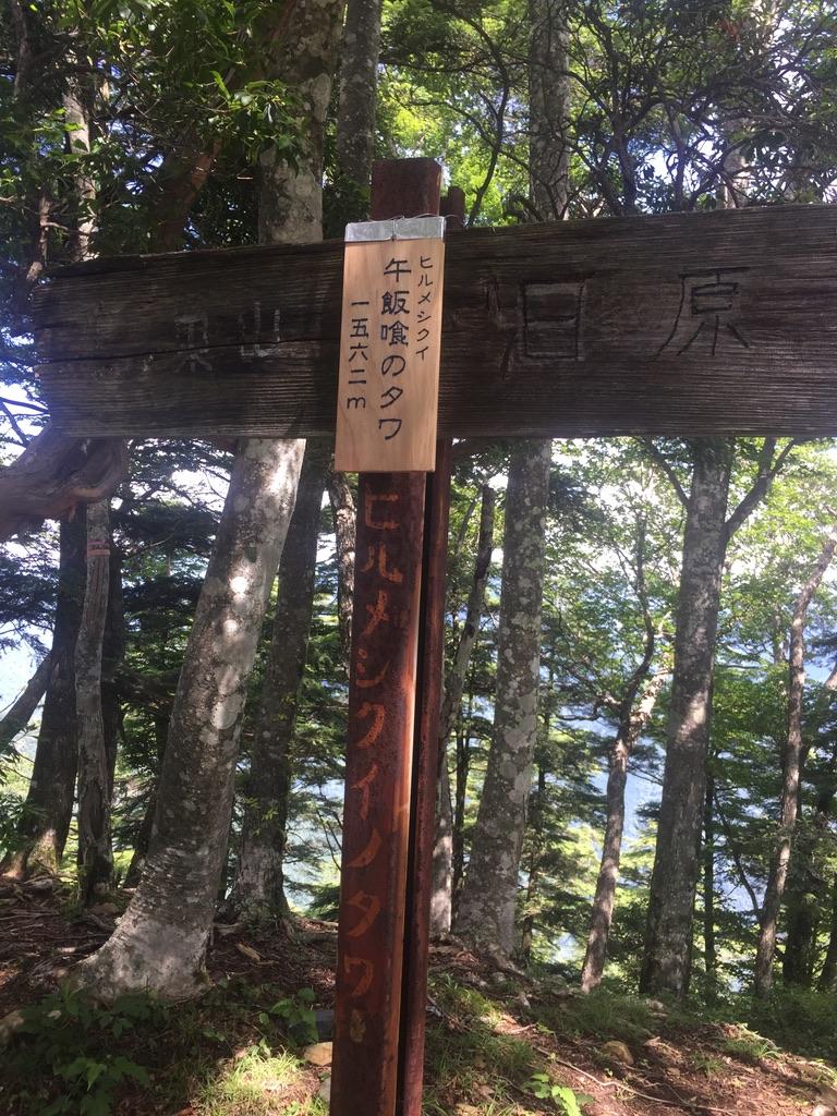鷹ノ巣山・稲村岩尾根から鷹ノ巣山・ヒルメシクイノタワ