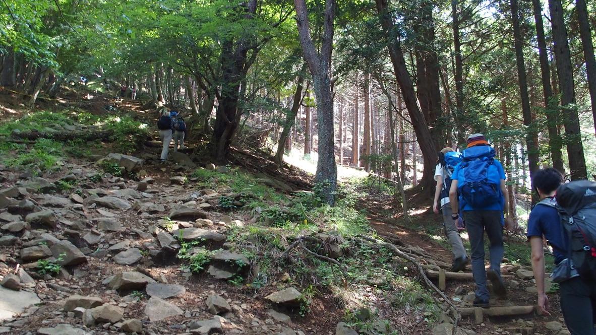 塔ノ岳・大倉尾根(バカ尾根)の階段・はじまりました
