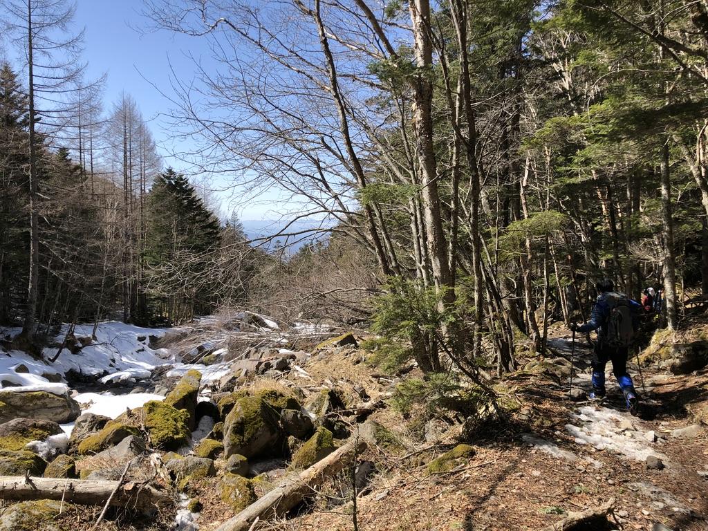 八ヶ岳・南沢・雪のないとこ歩きます
