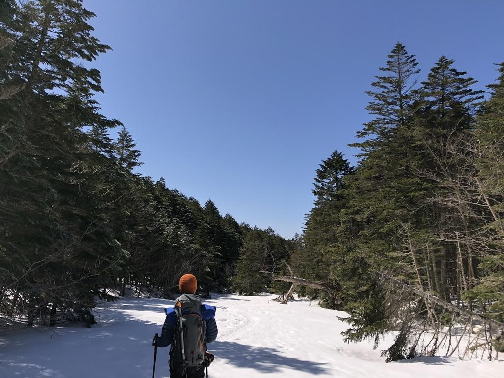 八ヶ岳・南沢の河原