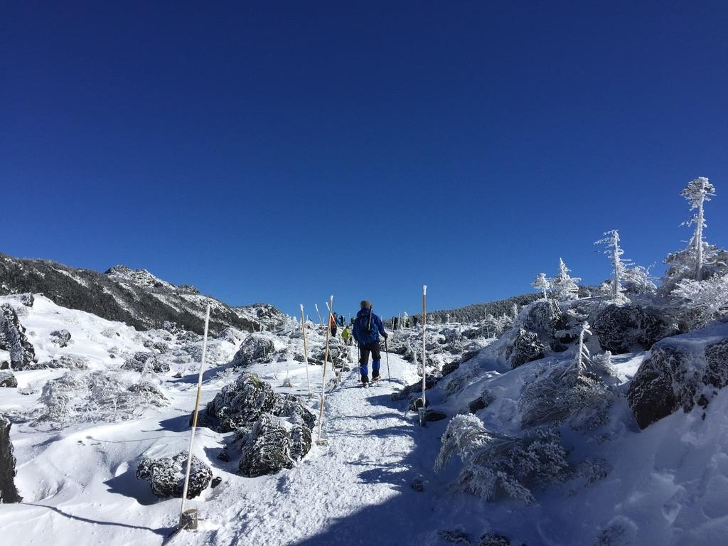 北横岳山頂を目指す・大した登りはありません