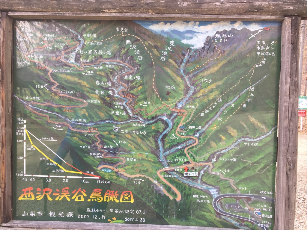 甲武信ヶ岳・ねとりインフォメーション・西沢渓谷鳥瞰図