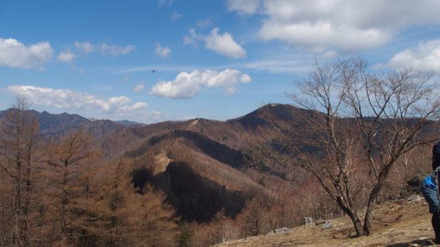 七ツ石山に向かう途中から見える雲取山