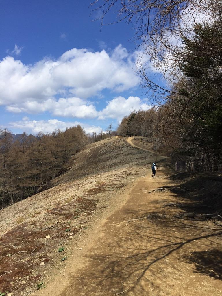 雲取山・雲取山に向かう稜線