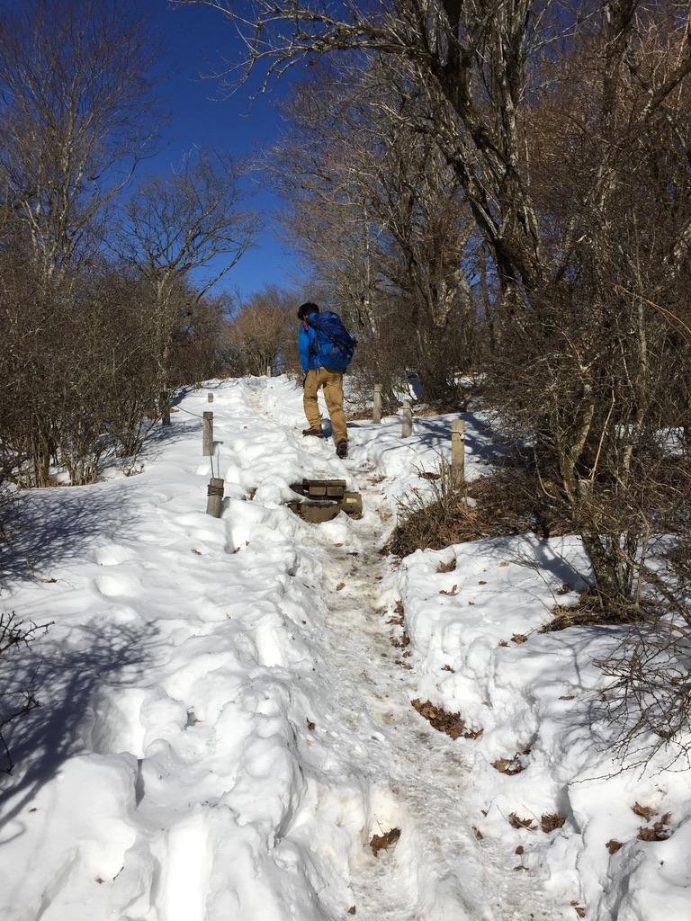 丹沢・鍋割山・雪がだんだん深くなる・滑らないよう登りましょう