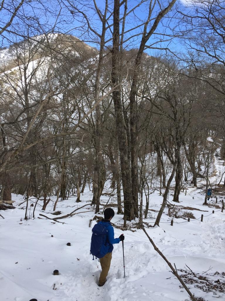 鍋割山稜から見る塔ノ岳?