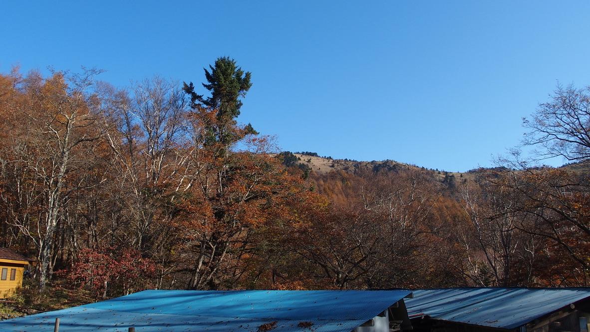 大菩薩嶺・あちらに見える稜線歩きます