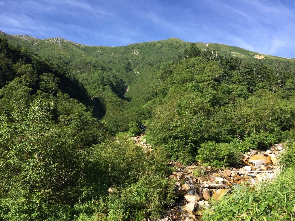 常念岳・一ノ沢からの常念岳の稜線