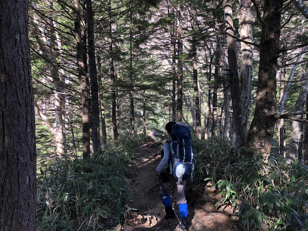燕岳・第一ベンチに至る道・林道