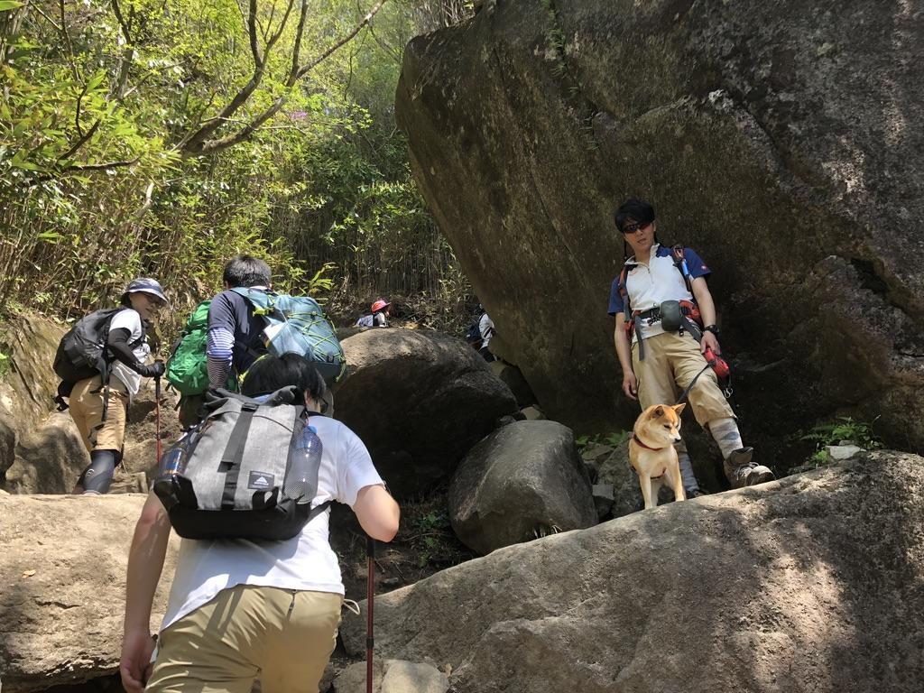 筑波山・白雲橋コース・弁慶七戻りの先にいた登山犬