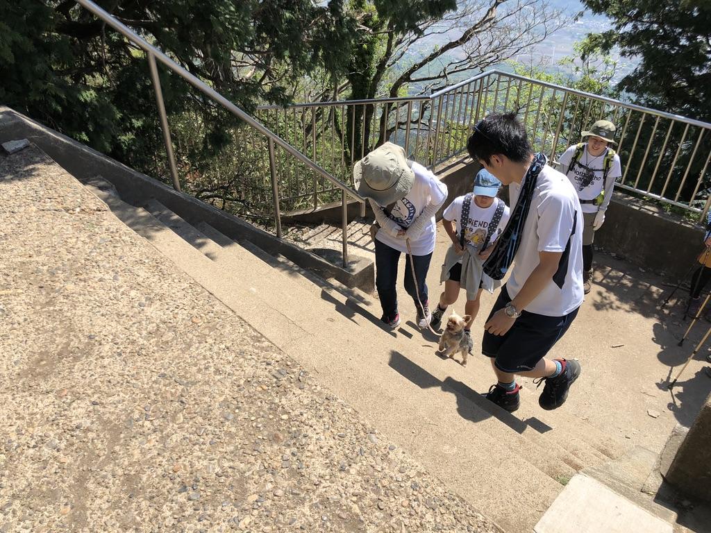 筑波山・男体山・山頂でまた会いました登山犬