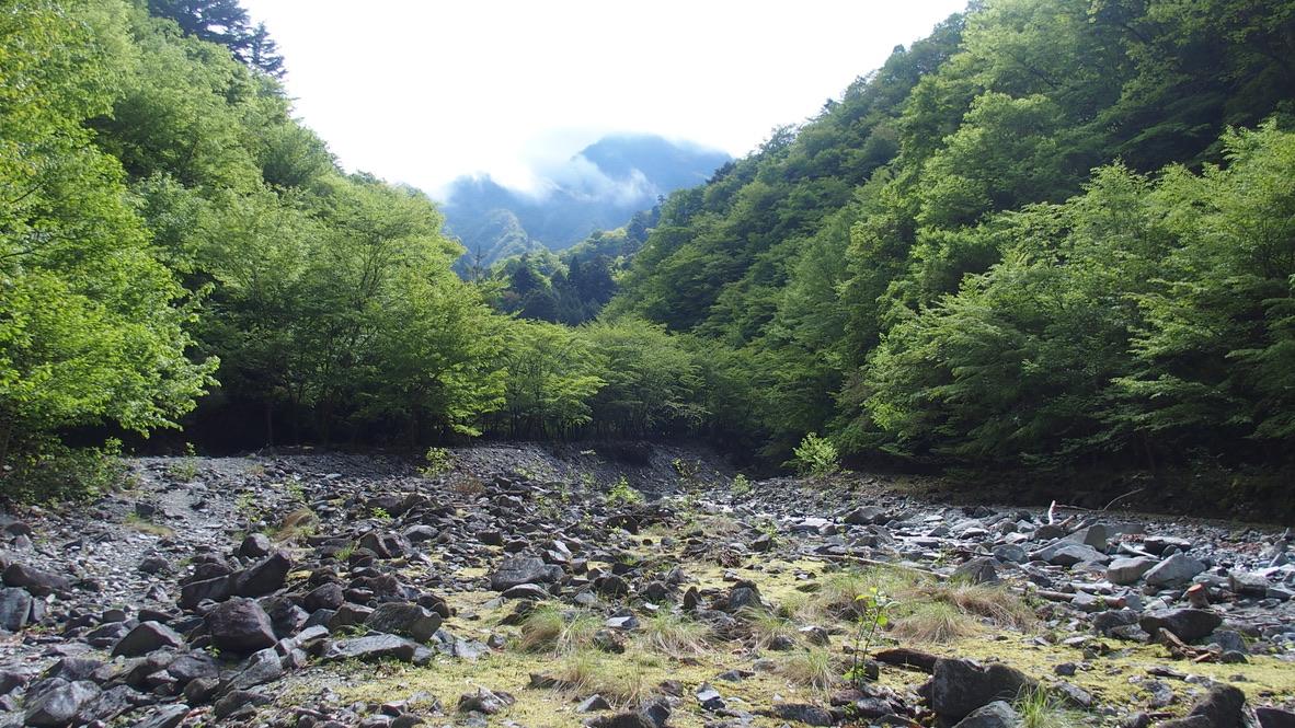 檜洞丸・用木沢の河原