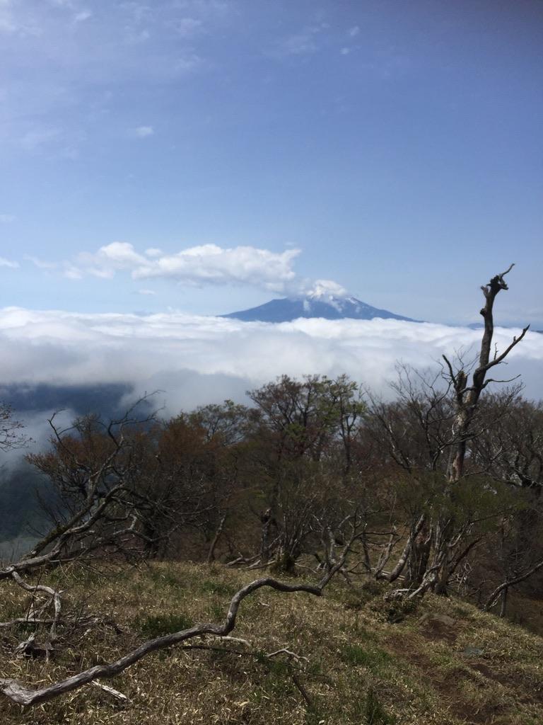 檜洞丸・途中で見え、ない富士山