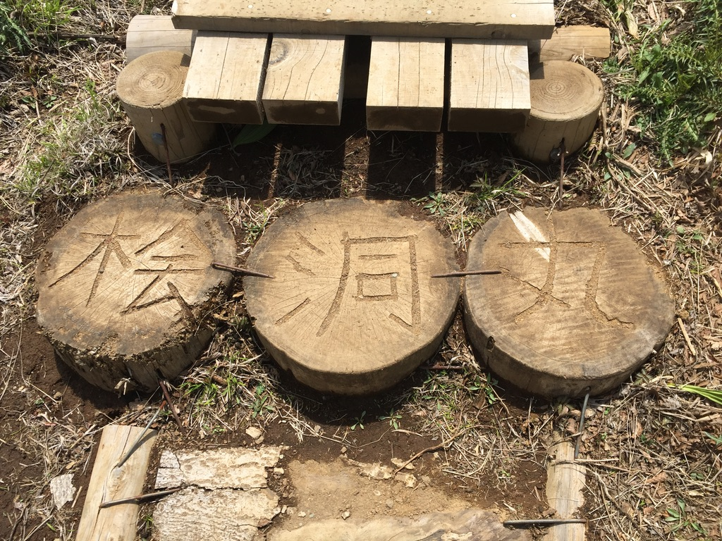 檜洞丸・木の階段の桧洞丸
