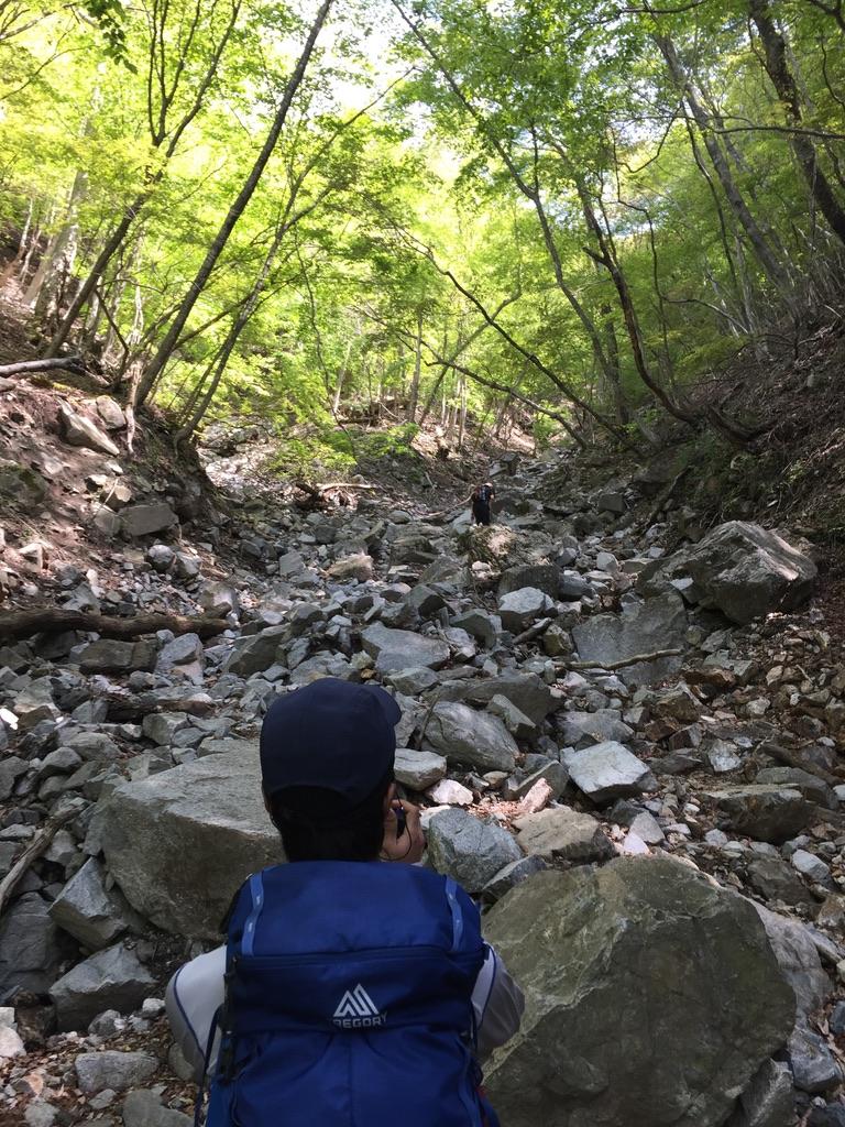 檜洞丸・犬越路への登り道