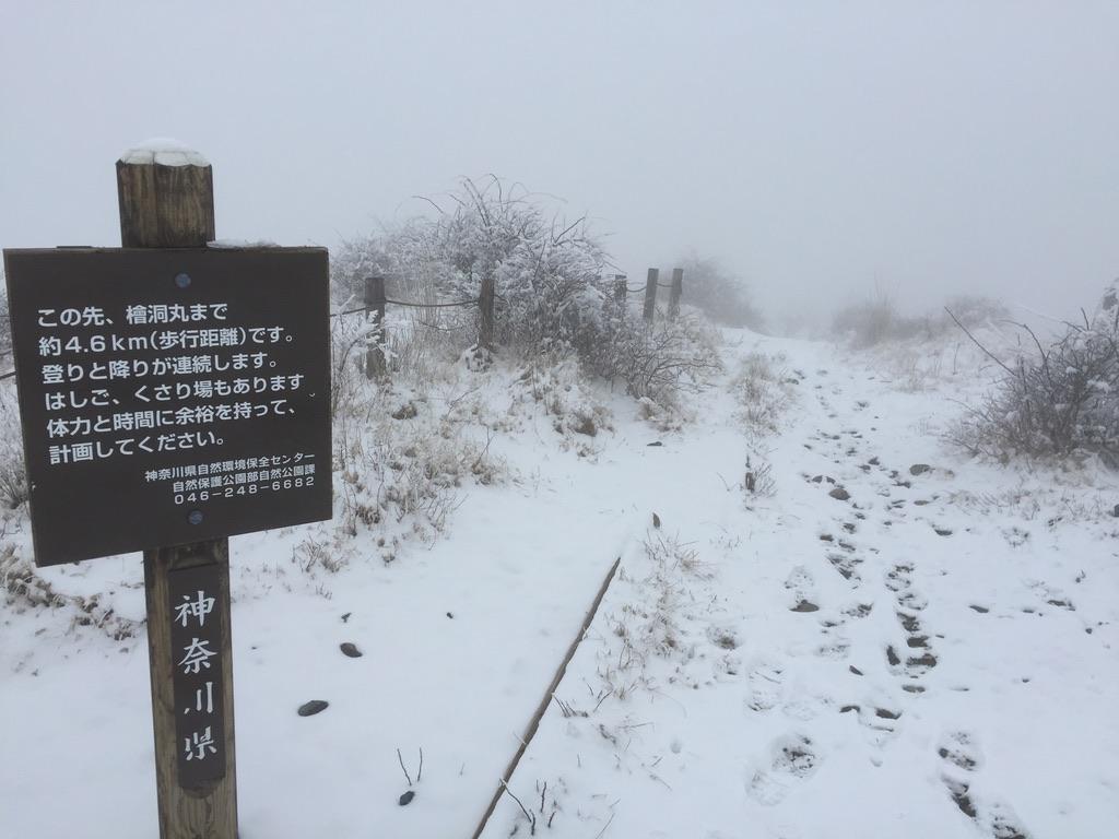 蛭ヶ岳・蛭ヶ岳から檜洞丸へと続く道