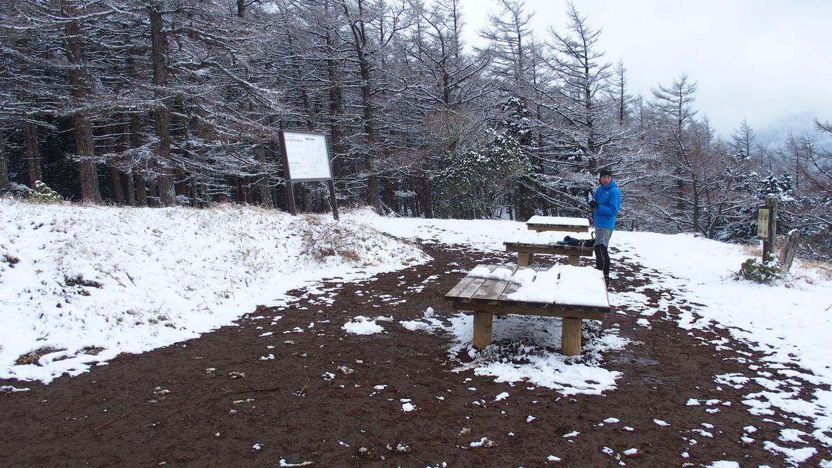 蛭ヶ岳・姫次雪が溶け出した