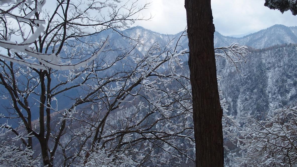 蛭ヶ岳・山の稜線見えてきた