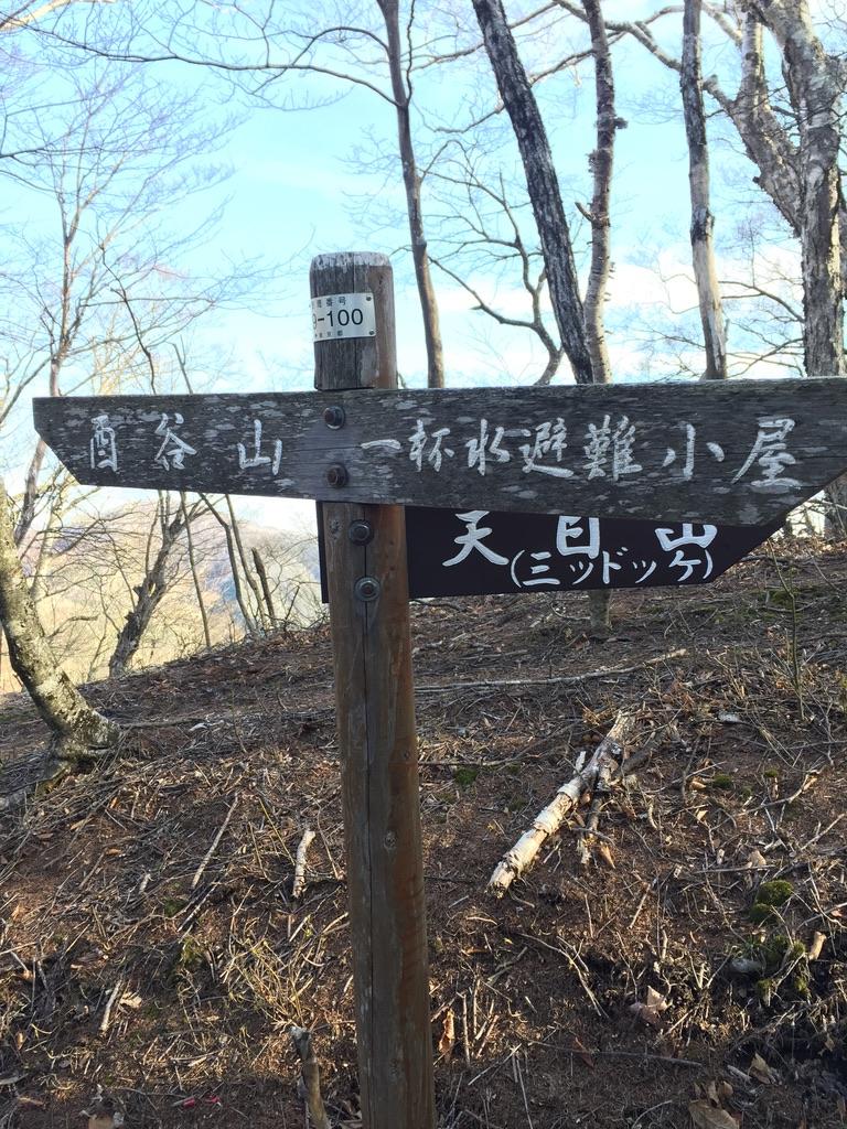 川苔山・雲取山・天目山(三ツドッケ)への分岐