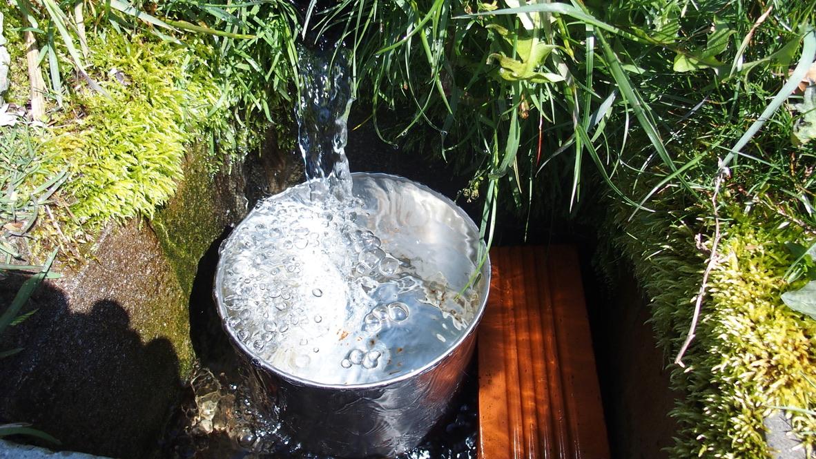 川苔山・雲取山・長沢背稜・酉谷避難小屋は水も豊富にありました