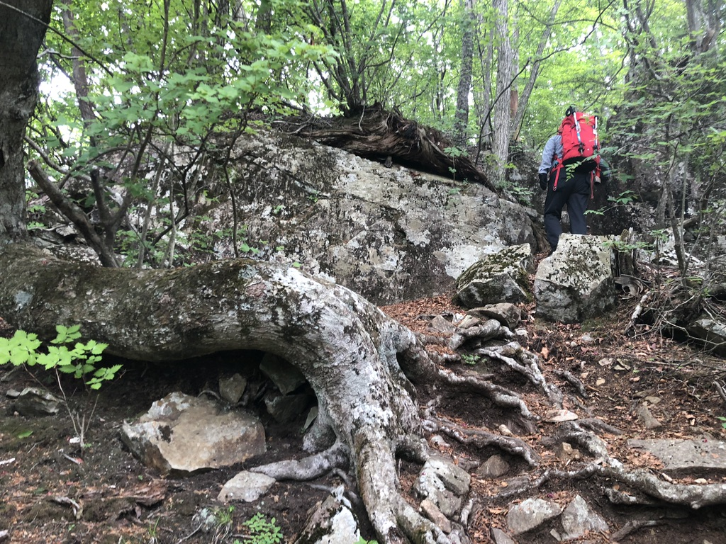 三頭山・鶴峠分岐から三頭山までの登りの岩場