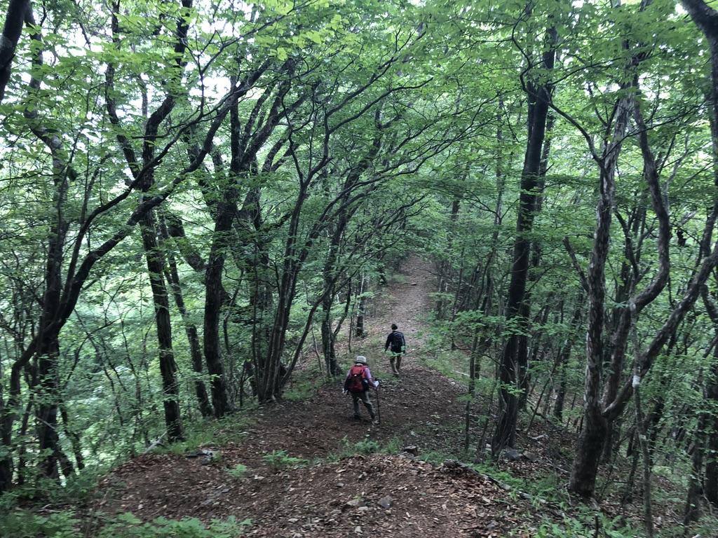 三頭山・深山の路