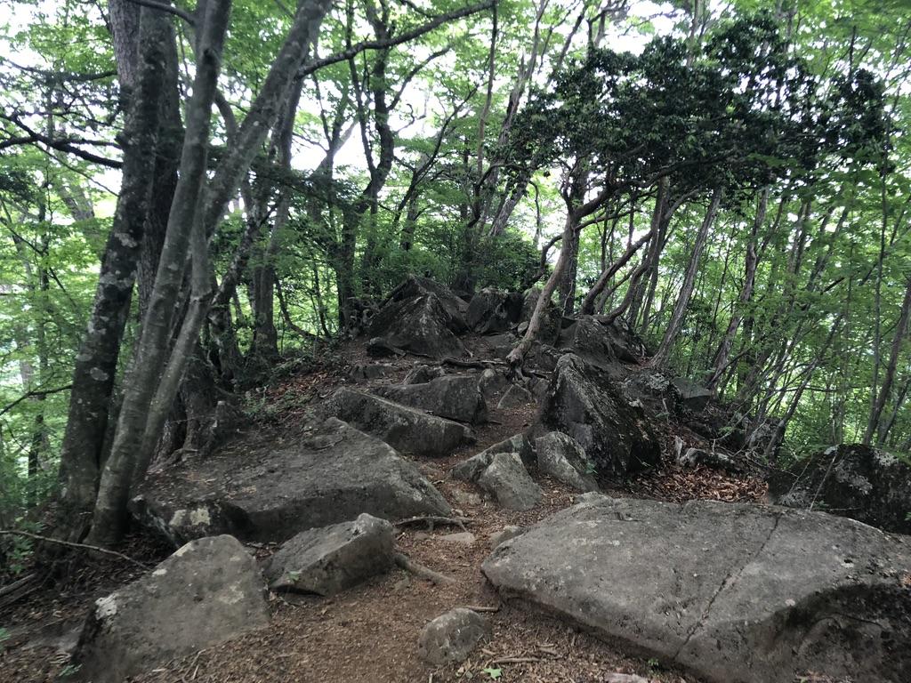 三頭山・石山の路