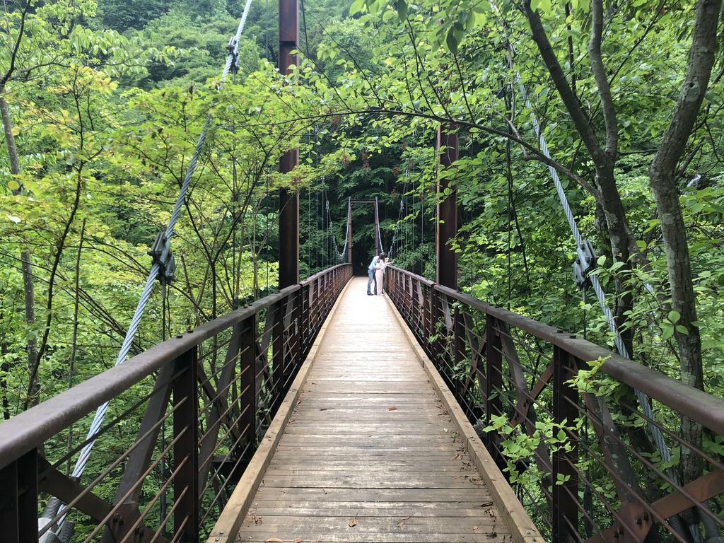 三頭山・結構立派な滝見橋