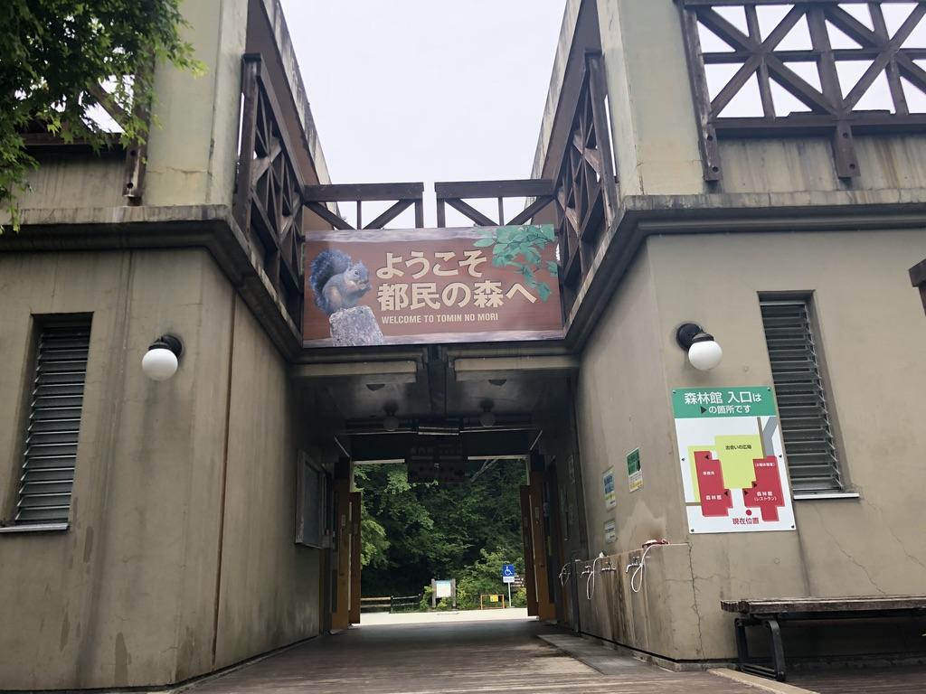 三頭山・都民の森・森林館