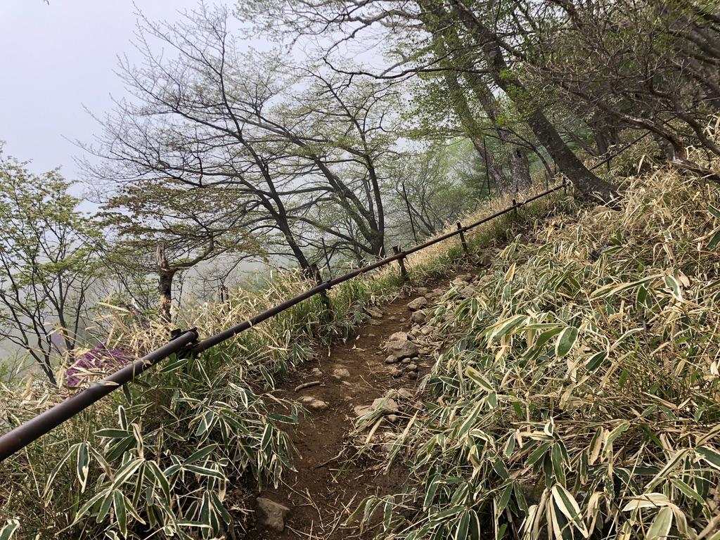 日光男体山・四合目の鳥居を越えたあたりから周りがガスってきましたよ