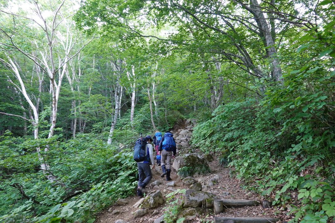 磐梯山・中ノ湯跡からは樹林帯登りが続く