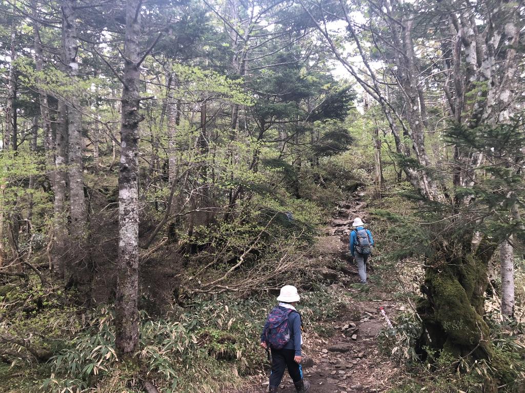 恵那山・山頂まであと少し