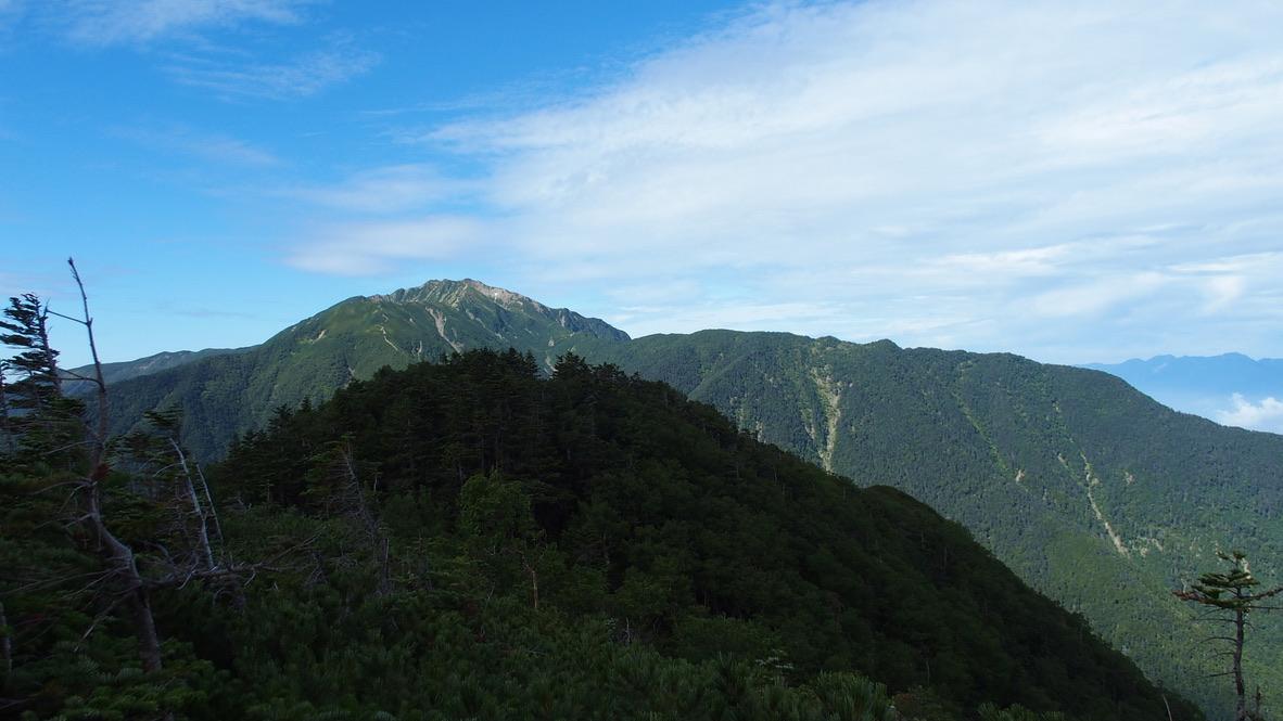 甲斐駒ヶ岳・双児山からの仙丈ヶ岳