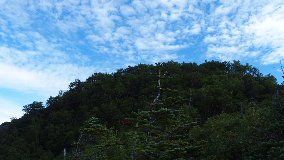 甲斐駒ヶ岳・双児山への登り