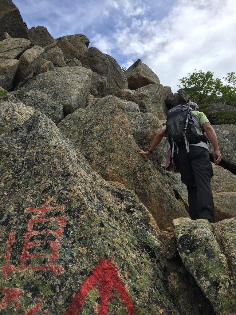 甲斐駒ヶ岳・岩稜直登コースを選択