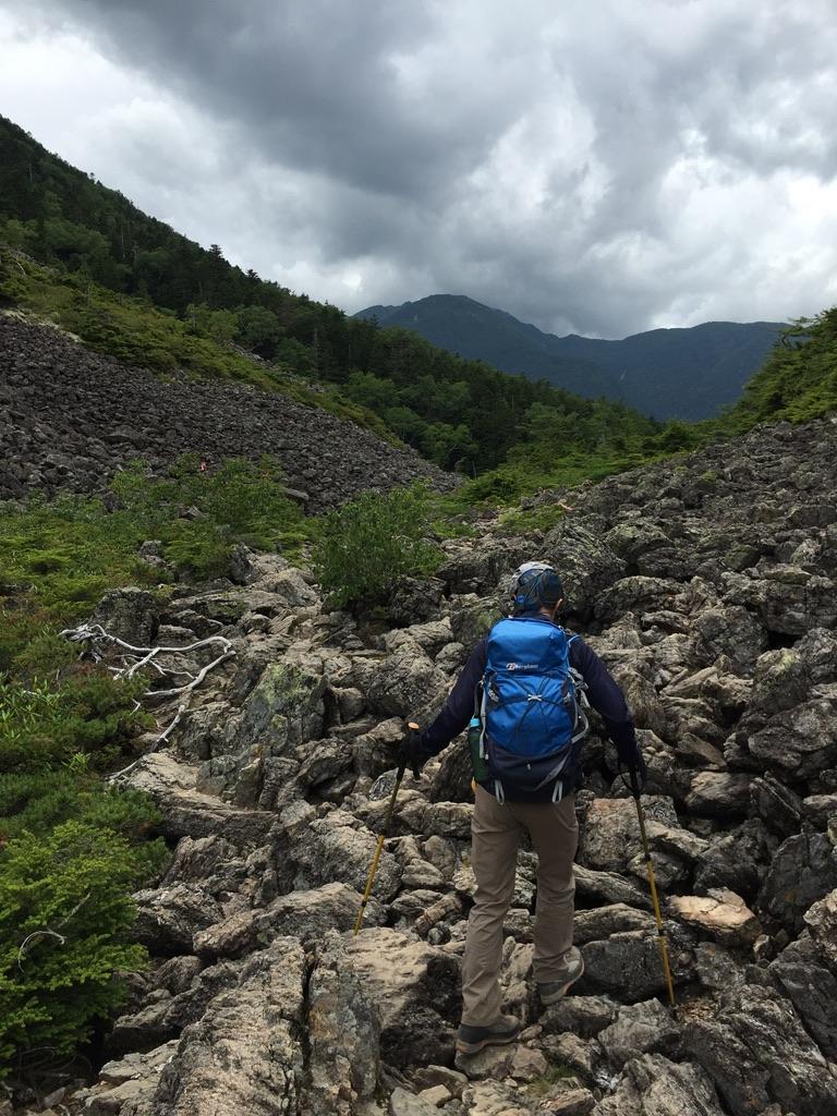 甲斐駒ヶ岳・仙水峠からはハイマツの露岩
