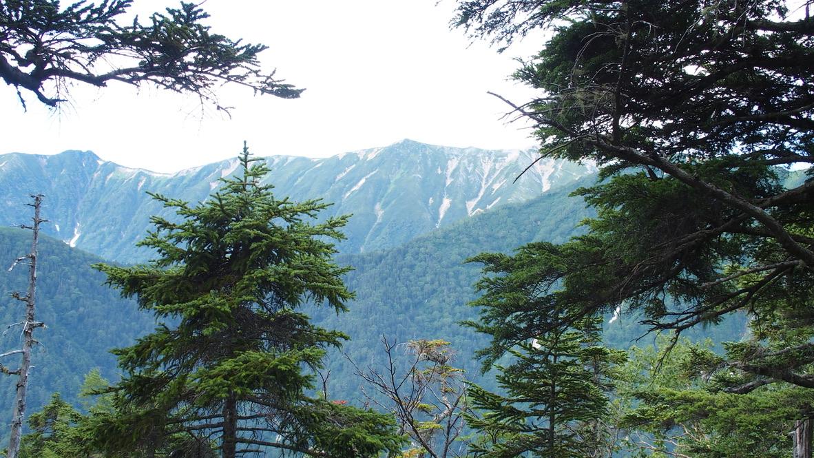 燕岳・燕岳の途中から見える常念岳や大天井岳の尾根