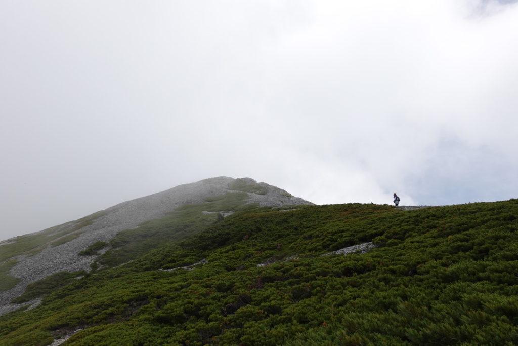 針ノ木岳・蓮華岳・蓮華岳はガスガスでした。。