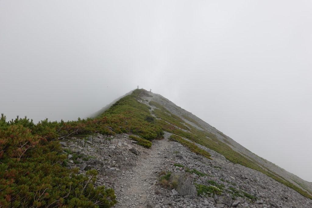 針ノ木岳・蓮華岳・蓮華岳の頂上まであと少し