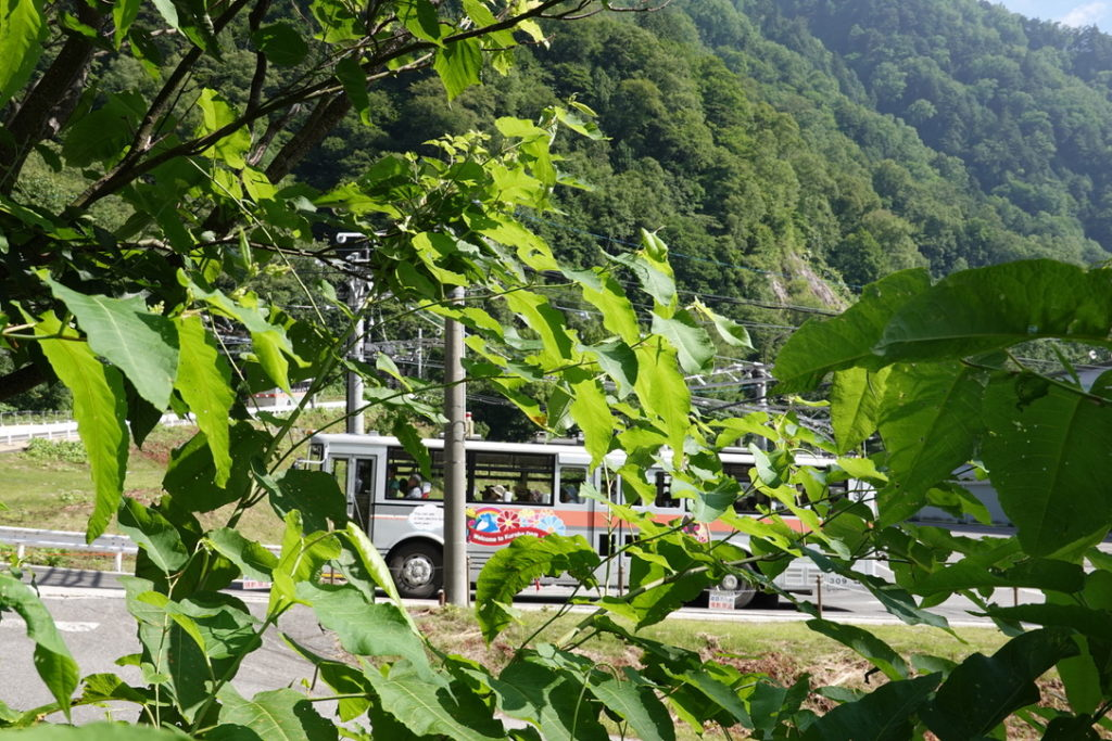 針ノ木岳・蓮華岳・草木の間からトロリーバスを激写