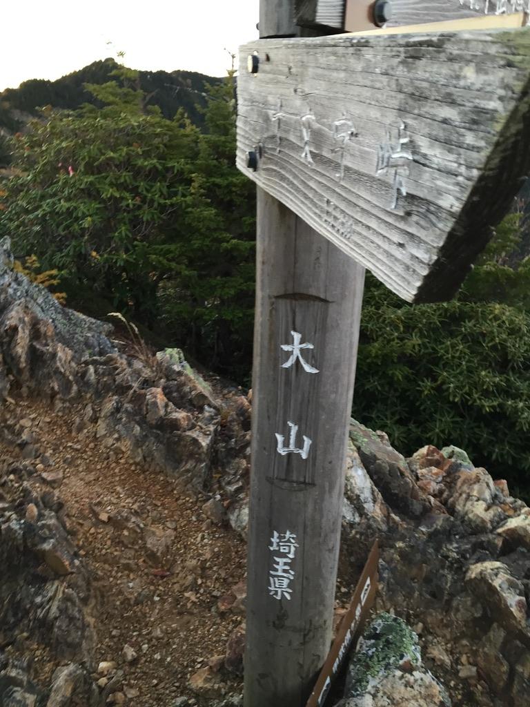 甲武信ヶ岳・三宝山・大山