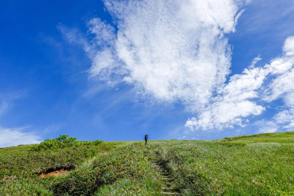 巻機山・青と白と緑の世界