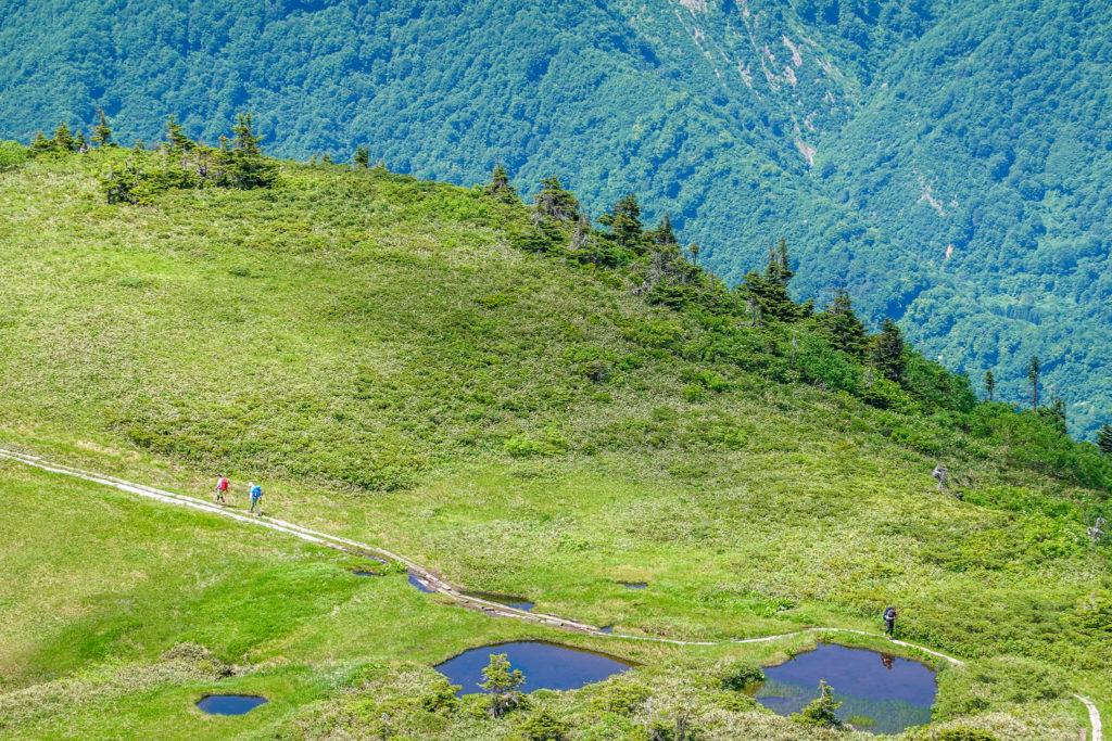 巻機山・巻機山の尾根から巻機山避難小屋近くの池塘を望む